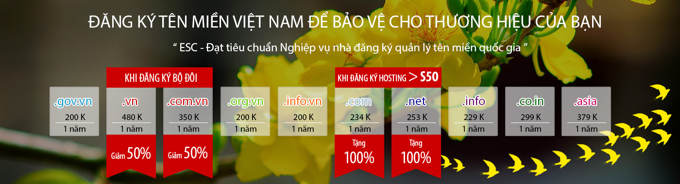 bannerdomain-hoamai-esc- Trang chủ ESC